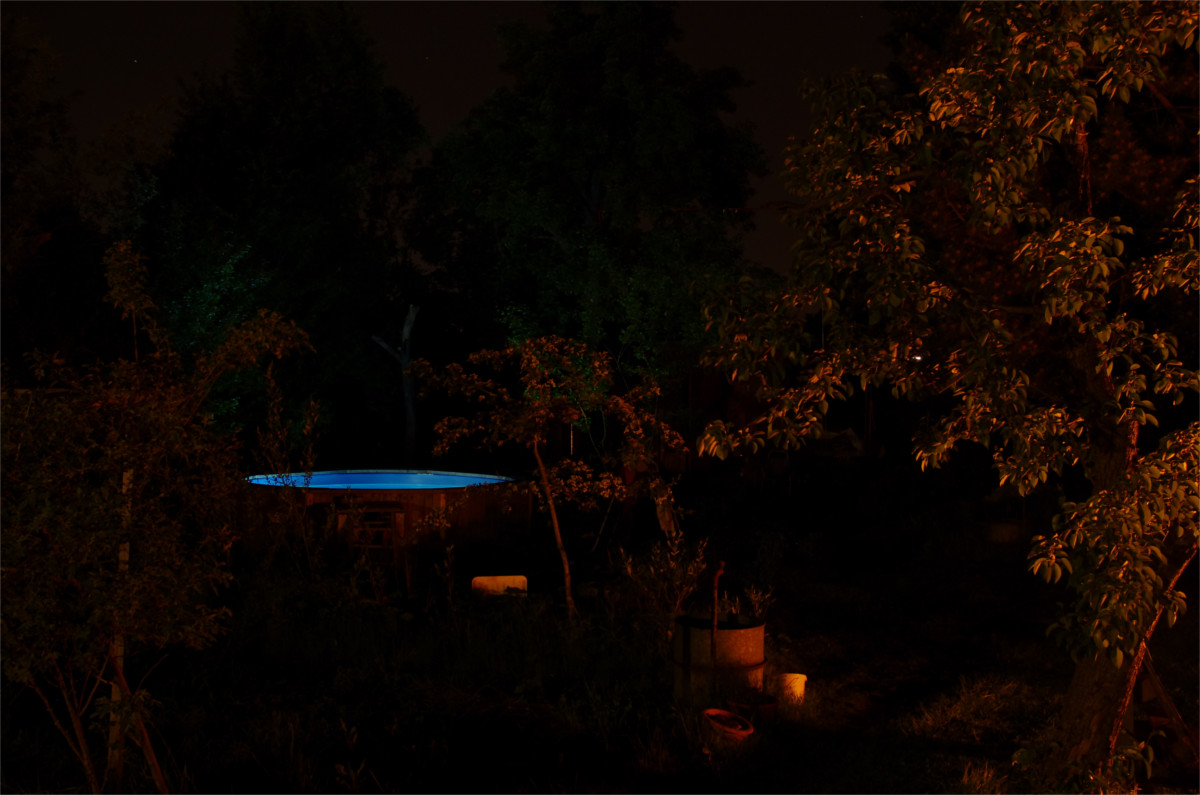 gartenpoolnacht